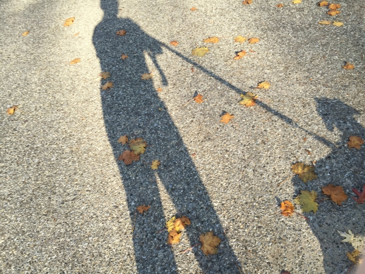 walking-shadows