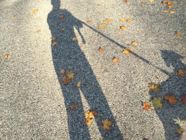 walking-shadows
