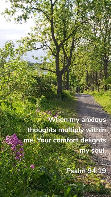 When my anxious thoughts multiply within me, Your comfort delights my soul. Psalm 94:19